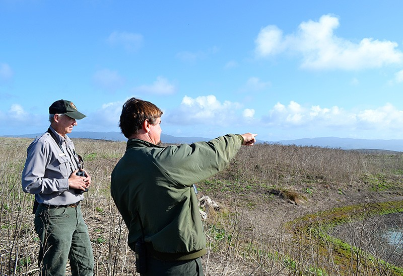 OVER THERE David Press, right, and Tim Bernot spot tule elk on D Ranch. - JAMES KNIGHT