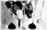 wine-9727.jpg