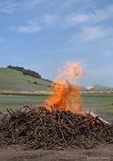 RAYMOND BALTAR - Reduce your burn pile pollution