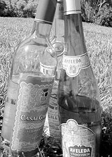drinks-0221.jpg
