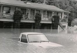 flood.michael.text.jpg