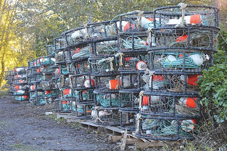 EMPTY POTS, EMPTY POCKETS The delay of the commercial Dungeness crab season has put the pinch on fishermen and local nonprofits that depend on crab dinners for fundraising.