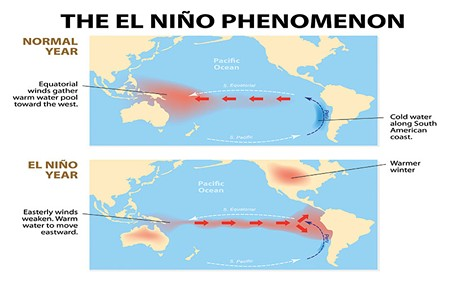 READING THE SIGNS  Warm bands of water have already amassed near the equator, evidence that El Niño weather patterns are likely.