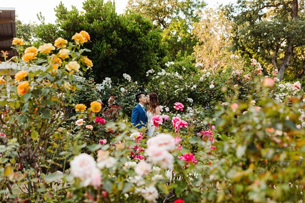 LOVE BLOOMS The Marin Art & Garden Center's floral backdrops make it a destination for weddings as well as conservation. - PHOTO COURTESY MARIN ART & GARDEN CENTER