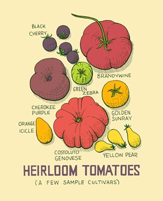 heirloomtomatoes1.jpg
