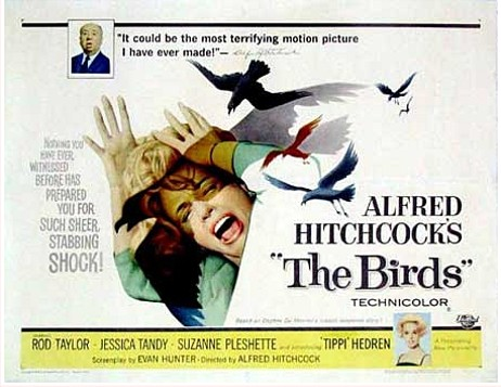 hitchcockthebirds2.jpg