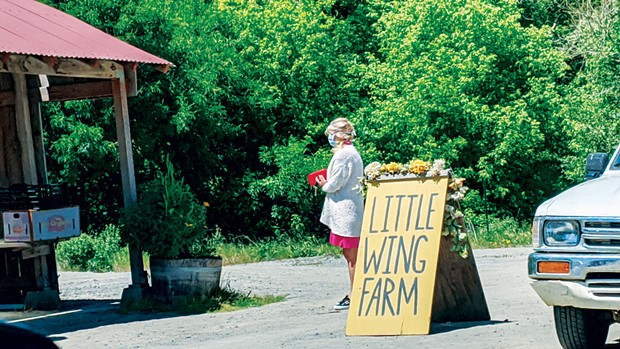 A masked patron practices social distancing as she waits in line at the Little Wing Farm stand on Point Reyes-Petaluma Road.