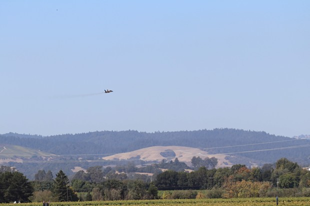 wings_over_wine_country_sonoma_county.jpg