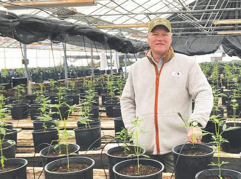 'We try to do things the Granger way, which isn't the Trump way,' says Vince Scholten, seen here in his greenhouse. - JONAH RASKIN