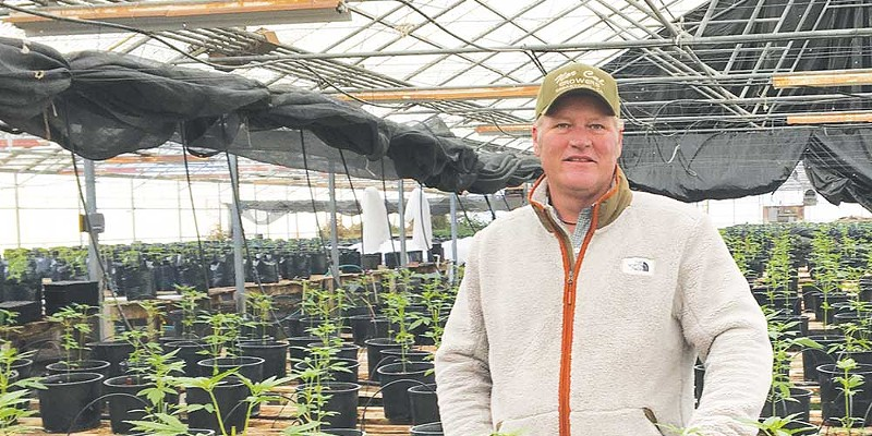 'We try to do things the Granger way, which isn't the Trump way,' says Vince Scholten, seen here in his greenhouse.