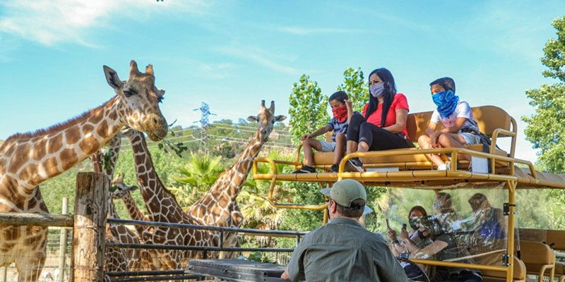 """Best known for its """"Sonoma Serengeti"""" tours and stays, the wildlife refuge has started offering """"Zoomfaris"""" to guests. Photo by Will Bucquoy."""