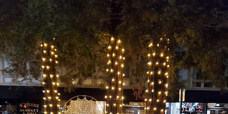 """HOLIDAY ART  Public art installations such as """"Ethereal Strength,"""" by Santa Rosa artist Lacy Anderson, make for festive photo opportunities as part of downtown Santa Rosa's reimagined Winter Lights event."""