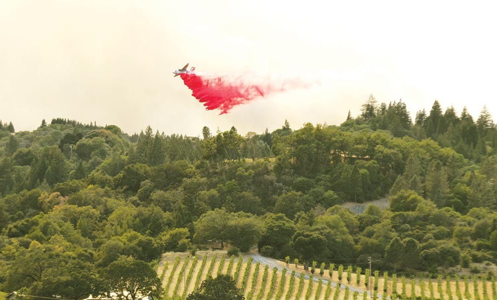 An airplane flies over a Sonoma County vineyard this August. - CHRISTIAN SPANGENBERG