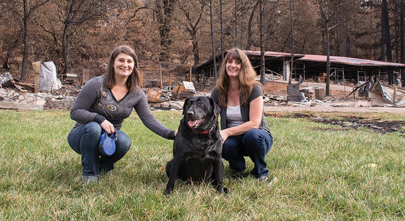 LUCKY DOG Although the Lofton family lost their Cobb home in the Valley Fire, their dog, Daisy, stayed healthy thanks to the Middletown Animal Hospital. - MELANIA MAHONEY