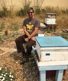 <b>BEE-REFT</b> Napa beekeeper Rob Keller says the valley's grape monoculture is a 'desert for bees.'