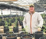 Cannabis Growers Revive the Hessel Grange