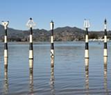 North Bay Artist Follows Rising Tides with Aquatic Sculptures