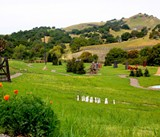May 20: Outdoor Views in Napa