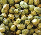Hope 