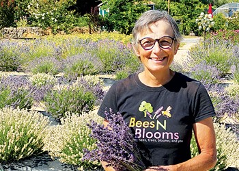 Lavender Labyrinth Serves As Sustainable Sanctuary For North Bay Residents