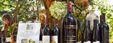 3773fb27_wine-auction.jpg