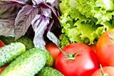 f26260e1_fresh_vegetables.jpg