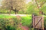 592abdb6_gate_in_woods.jpg