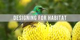 f8adc6fc_designing_for_habitat.png