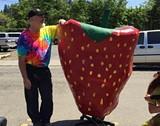 eab9143a_eddie-at-strawberry-1-e1458524570868.jpg