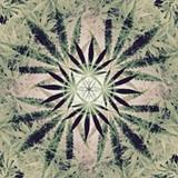 d8c2d073_cannabis_mandala_soft_colors.jpg