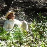 611ab9df_forestbathing1.jpg