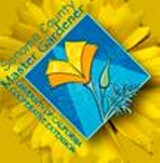 98a12fba_scmg_logo.jpg