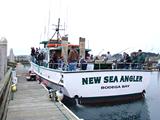 7bb03ed0_new_sea_angler.png