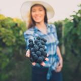 cfb12b31_moms_who_make_wine_1080_x_1080.jpg