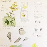 Nature Journaling at the Laguna - Uploaded by Laguna