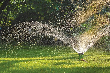 WORD TO THE WATER-WISE You don't have to kill your lawn, but you do need to be smart about watering.
