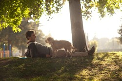 FOCUS FEATURES - A FRIEND IN NEED: Dodge (Steve Carell) takes care of an abandoned mutt in Seeking a Friend for the End of the World