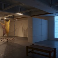A TALE OF TWO INSTALLATIONS: Indrani Nayar-Gall's show at Winthrop University