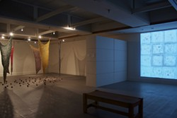 JACOB OLSEN - A TALE OF TWO INSTALLATIONS: Indrani Nayar-Gall's show at Winthrop University
