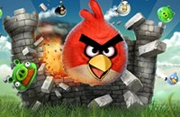 Myrick challenged by new Tea Party Angry Bird