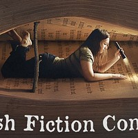 Announcement: CL's 3rd Annual Flash Fiction Contest