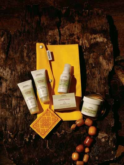 Aveda Institute Charlotte - Travel Body and Soul gift set. - Holiday gift sets wrapped - and ready to give! Spa packages - and gift cards also available - All services performed by - supervised students. - 1520 South Blvd., Ste 150. - 704-333-9940