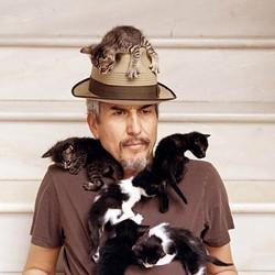 CAT MAN DO: Howe Gelb