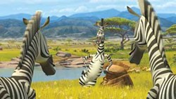 DREAMWORKS ANIMATION - CATCHING UP ON HIS Z'S: Marty (Chris Rock) chats with his fellow zebras in Madagascar: Escape 2 Africa.