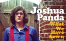 CD Review: Joshua Panda's <i>What We Have Sewn</i>