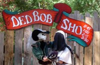 Clueless Breeders at Renfest