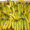 DNC 2012 Notebook: Adding a banana to the Uptown view