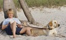 Bedtime Stories, The Spirit and Marley & Me among new DVD reviews