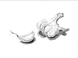 b17ce9d3_garlic.jpg