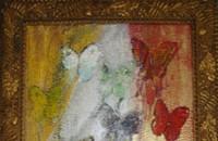 Exhibit: <i>Butterfly World</i>